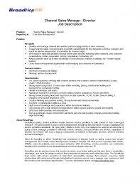 job description account manager software professional resume job description account manager software account development manager job description sample channel account manager resume channel