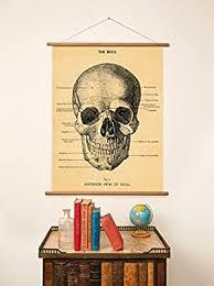 Cavallini Papers & Co. Cavallini Vintage Skull ... - Amazon.com