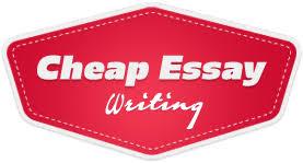 custom amp cheap essays writing service   best essay writers online cheap essay writing