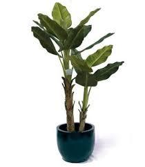 equadorian miniature banana plant artificial plants artificial trees fake tree fake plants artificial plants for office decor