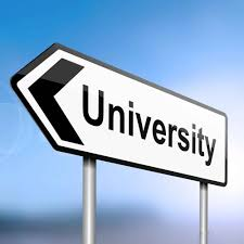 4 essays on the role of universities in 21st century
