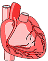 Neuroscience Resources for Kids - <b>Body System</b> Interaction
