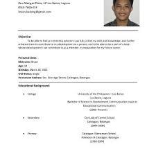 travel agent resume sample  moresume coramp agent resume ramp