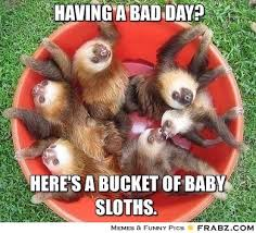 Having a bad day?... - Bucket of sloth Meme Generator Captionator via Relatably.com
