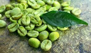 Image result for kopi hijau dan kopi biasa