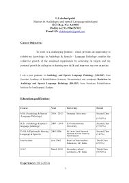 U LAKSHMIPATHI professional resume