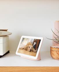 Google Nest Hub - <b>Digital</b> Photo Frame - Google Store