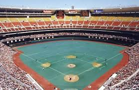 Image result for veterans stadium turf