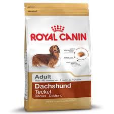 <b>Royal Canin Dachshund</b> Adult. Buy Now at Bitiba