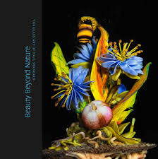 ordering beauty beyond nature the glass art of paul stankard  beauty beyond nature the glass art of paul stankard published by the robert m minkoff foundation hardcover