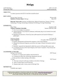 resume template good example sample headline for inside 89 89 marvellous examples of great resumes resume template