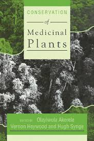 conservation of medicinal plants by domitian pasca issuu