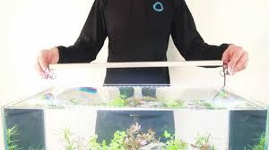 <b>AquaLighter</b> 1 LED lamp аквариумный <b>светильник</b> - <b>collar</b>.ua ...