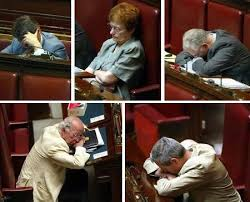 politici in Parlamento