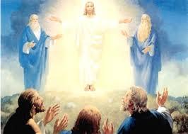Image result for transfiguração