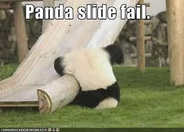 Panda Memes as Relationship Communication Tools | Kate McCombs via Relatably.com