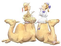 """Résultat de recherche d'images pour """"gif chameaux gratuit"""""""
