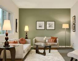 space living room olive: full size of living roomcontemporary apartment living room white wool rug standing lamp side