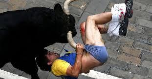 Resultado de imagem para touro miúra