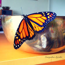 <b>Mysterious Blessing</b>: the Butterfly on my Altar - Jacqueline Lasahn