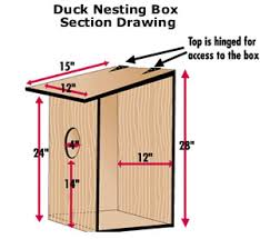 Wood Duck BoxesAll nesting boxes should be secured to protect hens and their clutches from nest predators  especially raccoons and rat snakes  The most effective way to