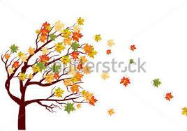 Resultado de imagem para arvore de outono+imagens