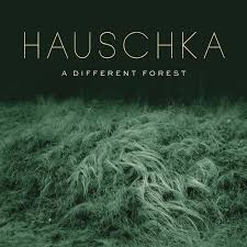 <b>Hauschka - A Different</b> Forest (2019, CD) | Discogs
