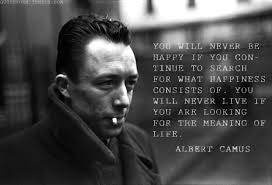 albert camus essay the stranger essays