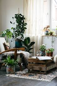 room plants x:  images about house plants cant live without them on pinterest gardens the plant and ferns