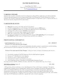 Retail Sales Consultant Exemple De Cv Work Experience Retail Sales     Resume CV Cover Leter