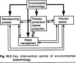 essay on environmental biotechnology by considering all these issues biotechnology may be regarded as a driving force for integrated environmental protection by environmental bioremediation