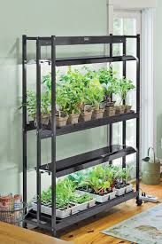 room plants x: great light for growing plants indoors  pinterest