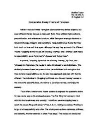 comparative essay samples  wwwgxartorg example of a comparison essay socialsci coeliteessayservicecom writing a comparative essay comparing amp contrasting timewriting example
