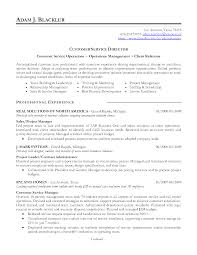 resume airport agent customer service agent resume samples service functional resume example customer service functional resume