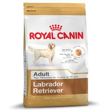 <b>Royal Canin Labrador Retriever</b> Adult. Buy Now at Bitiba