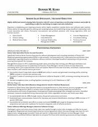 Professional Business Intelligence Analyst Templates to Showcase     TrendResume   Resume Styles and Resume Templates Military Intelligence Analyst Resume Sample