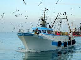 Risultati immagini per pescherecci viareggio