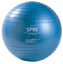 Professional Plus Xercise Ball™ - SPRI