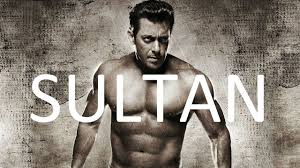 Image result for sultan movie image