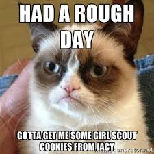 Had a rough day gotta get me some girl scout cookies from jacy ... via Relatably.com