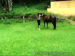 Most Relevant Videos - zoofilia rusa - Adult Script Pro 3