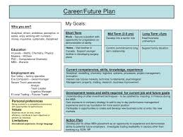 my plans for the future essay  essay definition morgan my plans  career plan example