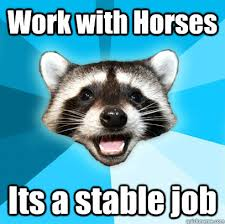 Work with Horses Its a stable job - Lame Pun Coon - quickmeme via Relatably.com