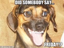 Did Somebody Say Friday!? TGIF! | Come Wag Along via Relatably.com