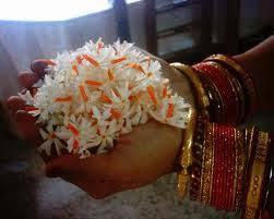 Image result for images of parijata flower