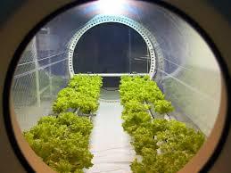Agricultura en el planeta Marte