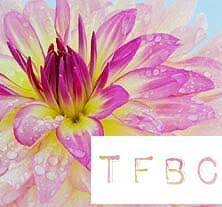 <b>TFBC</b> Women's Ministry - Posts | Facebook