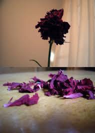 عندما   يُقابل الحب بالخيانة ..! Images?q=tbn:ANd9GcQzCCqbqNweLZ8tGGcmjEn5cnkQF6qBB4ZxWcDliVBOhH9tbLuF