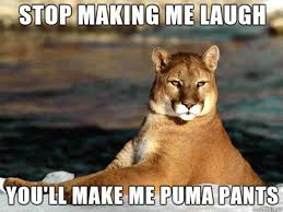 Some Of The Most Hilariously Bad Jokes You Will Ever Read - Why ... via Relatably.com