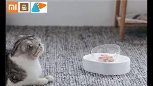 <b>Xiaomi PETKIT 15</b>° <b>adjustable</b> pet feeding bowl - YouTube